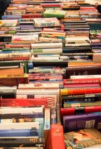 Bücher_ (1 von 1)