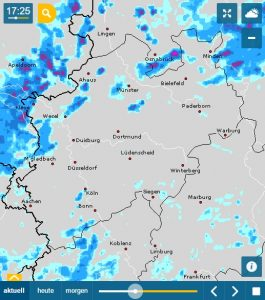RegenRadar, Web-Version