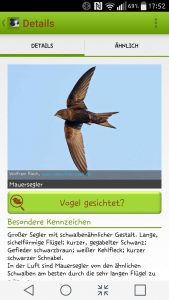 Sehr schöne Ergebnisseiten in der Vogel-App