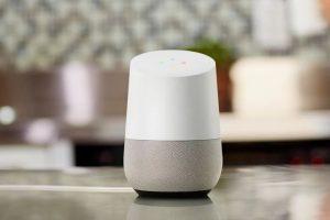Google Home, die sprechende Blumenvase