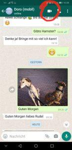So wird ein Videoanruf mit WhatsApp gestartet - einfach das Kamerasymbol anklicken (Screenshot)